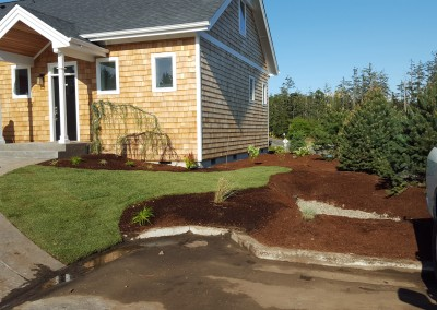 More new landscaping design
